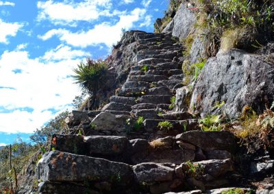 inka-trail-road